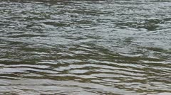 Skipping Stone in River Water (1 to 6) Stock Footage