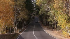 The car goes on the road among the autumn wood. Stock Footage