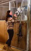 Woman feeding horse in the stall, vertical format Stock Photos