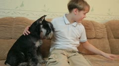Kid with two dogs at home Stock Footage