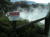 Stock Photo of Thermal pool Rotorua