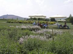 Stock Photo of flower buga 2007 federal garden exhibition gera