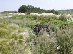 Buga 2007 federal garden exhibition gera grasses Stock Photos