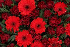 red floral arrangement - stock photo