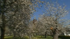 Orchard in full bloom - zoom in church tower behind white blossoms Stock Footage