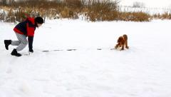 Boy playing with his dog in the park in winter, English Cocker Spaniel Stock Footage