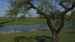 Dutch River Linge behind old apple tree + pan river landscape Stock Footage