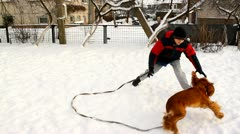 Boy playing with dog in the backyard in snow in winter, English Cocker Spaniel Stock Footage