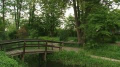 Bridge in swamp - tilt down Euphorbia palustris, Marsh spurge blooming Stock Footage