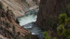 Yellowstone river through foliage - stock footage