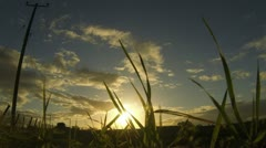 Sunrise early morning in the countryside timelapse Stock Footage