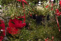 Mistletoe stand on Christmas market Stock Photos