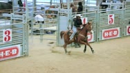 Stock Video Footage of black cowgirl in rodeo exhibition