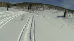 Snowmobile friends riding towards view winter mountain HD 1001 Stock Footage