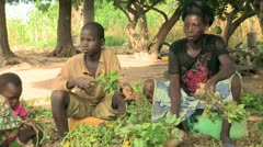 Burkina Faso: Processing Groundnuts Stock Footage