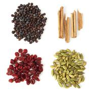 four spices and berries for gin tonic - stock photo