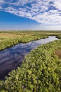 Everglades waterway Stock Photos