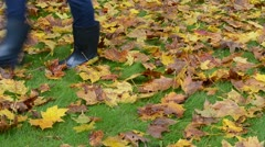 Colorful autumn tree leaves ground woman rubber boots walk Stock Footage