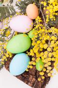 Easter eggs in pastel colors Stock Photos