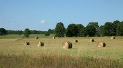 FIELD OF HAY - FARMLAND - DOOR COUNTY, WISCONSIN Stock Footage