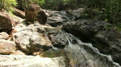 Deep forest clear water stream Stock Footage
