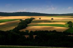 hill landscape sieggraben view appearance aspect - stock photo