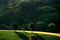 hill idyll landscape mood idyllic view aspect - stock photo