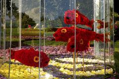 kukka kesällä art akvaario kuvitus kaunis päivä - stock photo