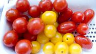 Food detail health red small taste tomato yellow Stock Photos