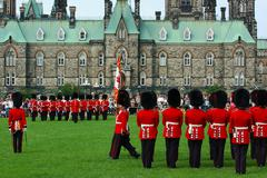 art grass green guard lawn red spectator uniform - stock photo