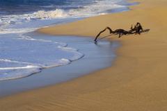 Beach water conserve desert evening foam foot Stock Photos