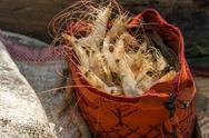 Shrimp in a Typical Bag Stock Photos