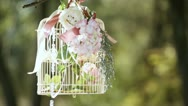 Bride with a decorative cage Stock Footage