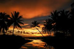 Coconut trees on the beach and sunset Stock Photos