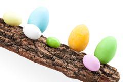 raw of easter eggs on bark - stock photo