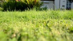 Meadow grass closeup grass lawn cutter mower worker pass shadow Stock Footage