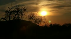 Silhouette of safari vehicle and sunset Stock Footage