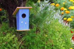 Blue bird house Stock Photos