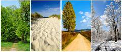 four seasons landscape - stock photo