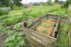 Compost bin - stock photo