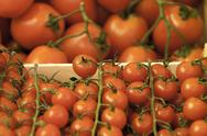 Stock Photo of Tomatoes on a Market Stall