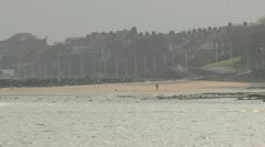 Dog and owner in distance on beach New Brighton.mp4 Stock Footage