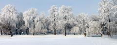 Stock Photo of winter panorama