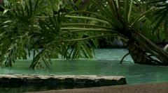 Idyllic tropical water scene 1 Stock Footage