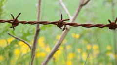 Barb wire - HD Stock Footage