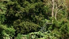 Treetop zipline - stock footage
