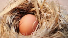 Eggs in the nest Stock Footage
