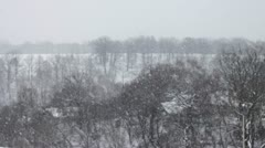 landscape in winter and falling snow - stock footage