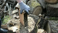 Closeup of wood chopping. man chop wood with axe Stock Footage