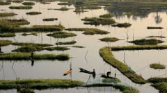 Local worker Loktak Lake, India Stock Footage